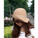 Vintage Lady's fashion wool hat woman wool felt hat fashion hat in Camel