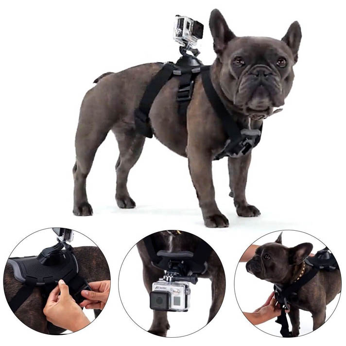 Hound Dog Fetch Harness Chest Strap Belt Mount For GoPro Hero 4 3